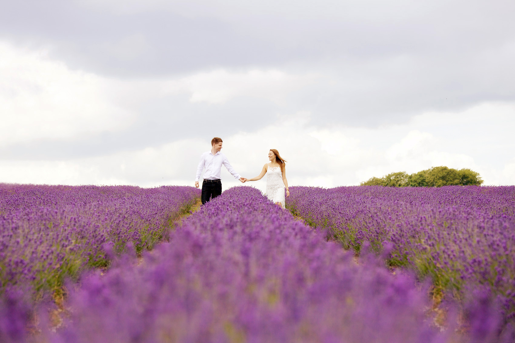 lavender-photo-shoot-3